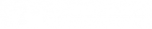 logo of torbay road animal hospital in st johns newfoundland